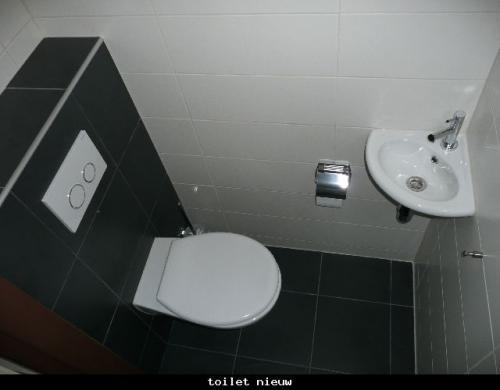 Renovatie Badkamer en toilet te Leidschendam 0