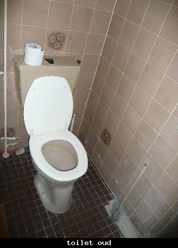 Renovatie Badkamer en toilet te Leidschendam 5
